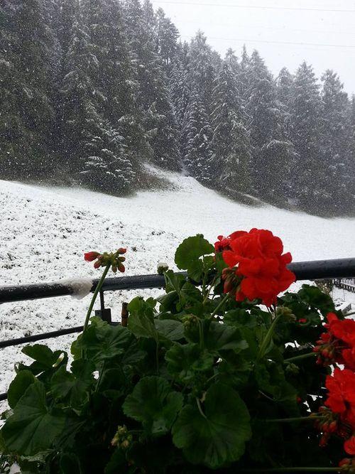 SchneeSeptember1