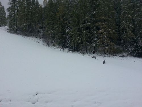 1.Schnee