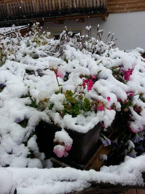 SchneeSeptember2